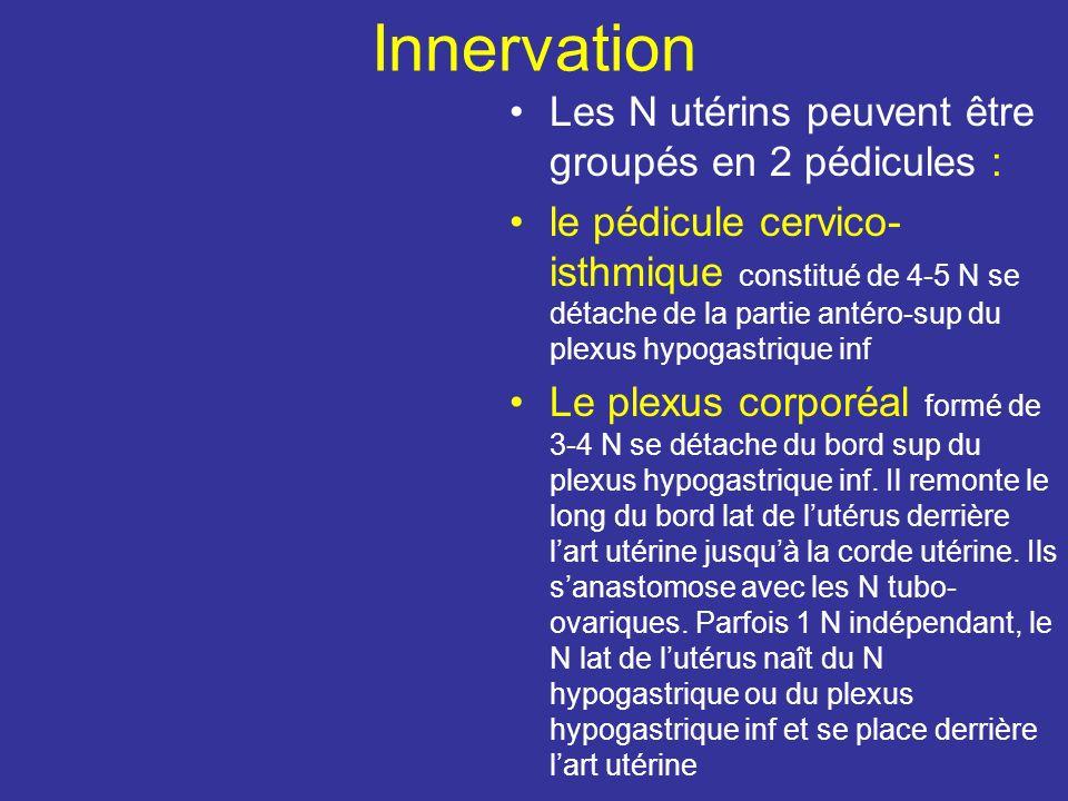 Innervation Les N utérins peuvent être groupés en 2 pédicules :