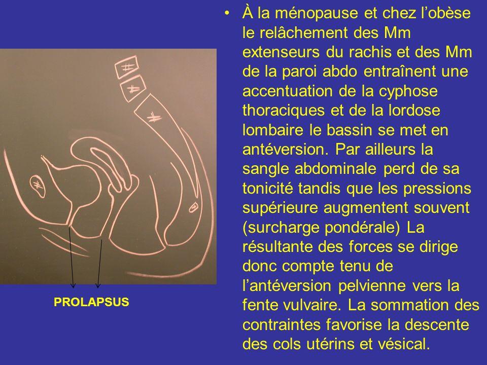 À la ménopause et chez l'obèse le relâchement des Mm extenseurs du rachis et des Mm de la paroi abdo entraînent une accentuation de la cyphose thoraciques et de la lordose lombaire le bassin se met en antéversion. Par ailleurs la sangle abdominale perd de sa tonicité tandis que les pressions supérieure augmentent souvent (surcharge pondérale) La résultante des forces se dirige donc compte tenu de l'antéversion pelvienne vers la fente vulvaire. La sommation des contraintes favorise la descente des cols utérins et vésical.