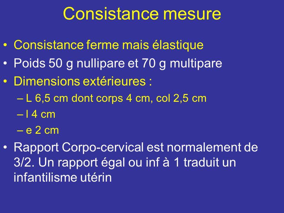 Consistance mesure Consistance ferme mais élastique