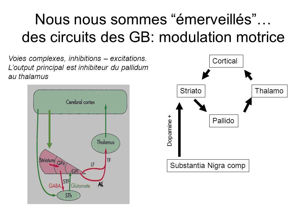 Nous nous sommes émerveillés … des circuits des GB: modulation motrice