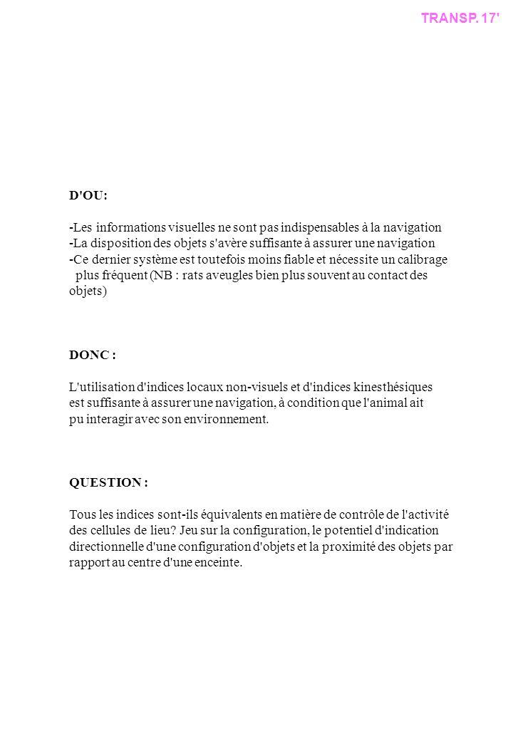 TRANSP. 17 D OU: -Les informations visuelles ne sont pas indispensables à la navigation.