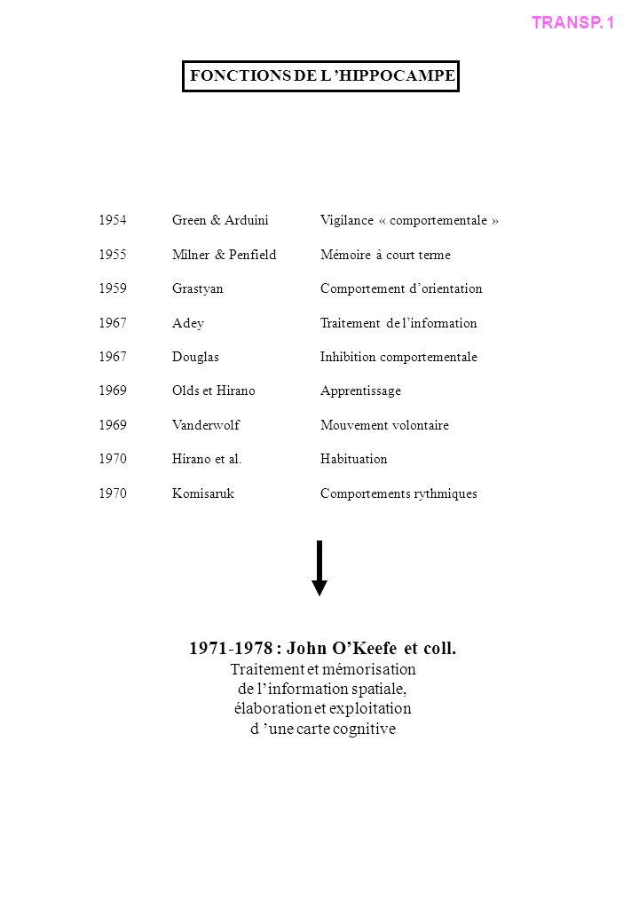 1971-1978 : John O'Keefe et coll. TRANSP. 1 FONCTIONS DE L 'HIPPOCAMPE