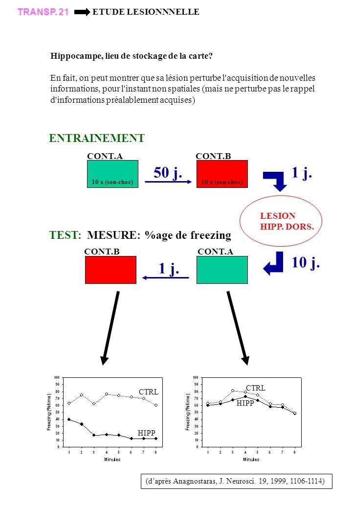 50 j. 1 j. 10 j. 1 j. ENTRAINEMENT TEST: MESURE: %age de freezing