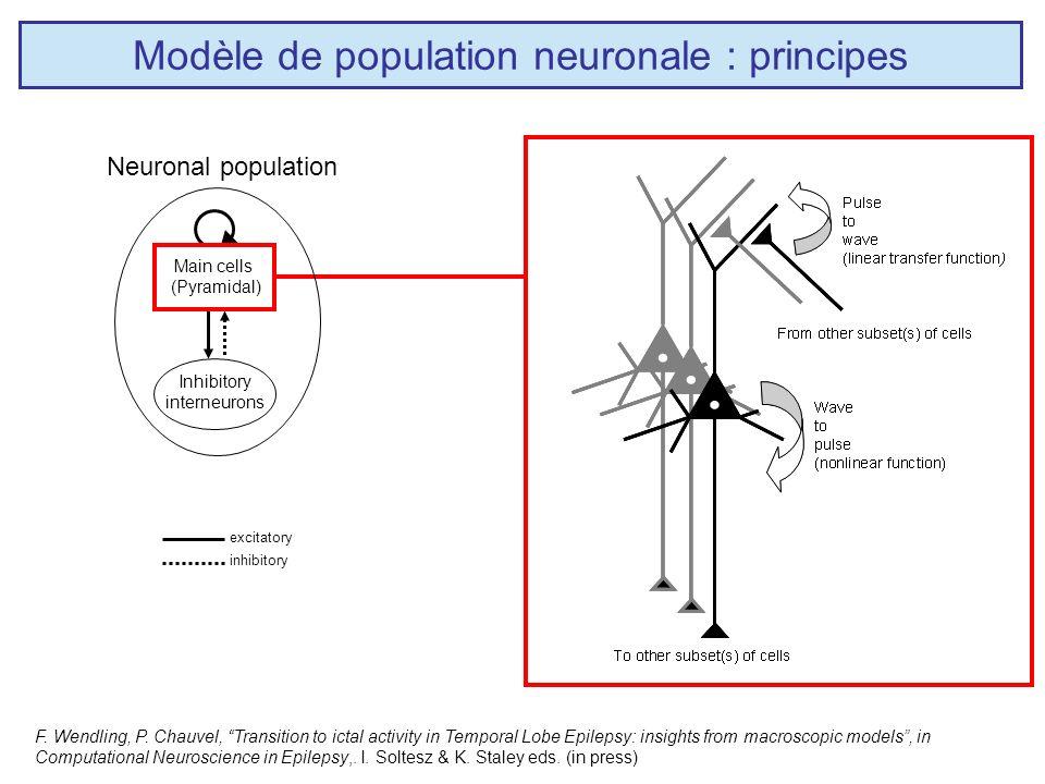 Modèle de population neuronale : principes