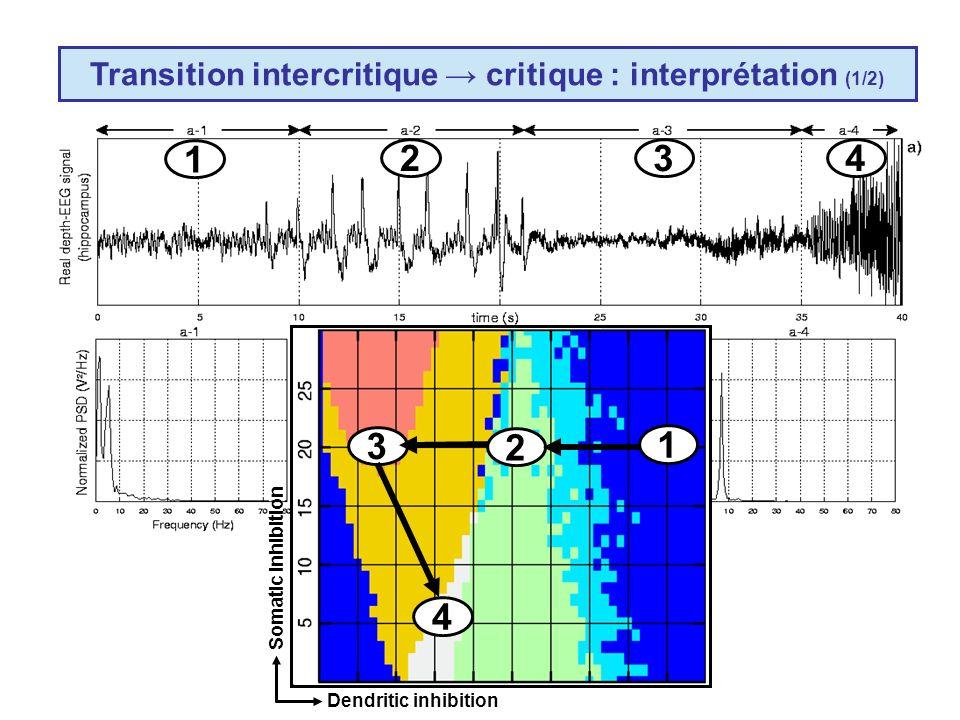Transition intercritique → critique : interprétation (1/2)