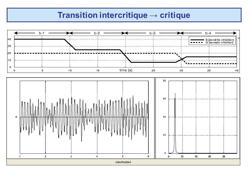 Transition intercritique → critique