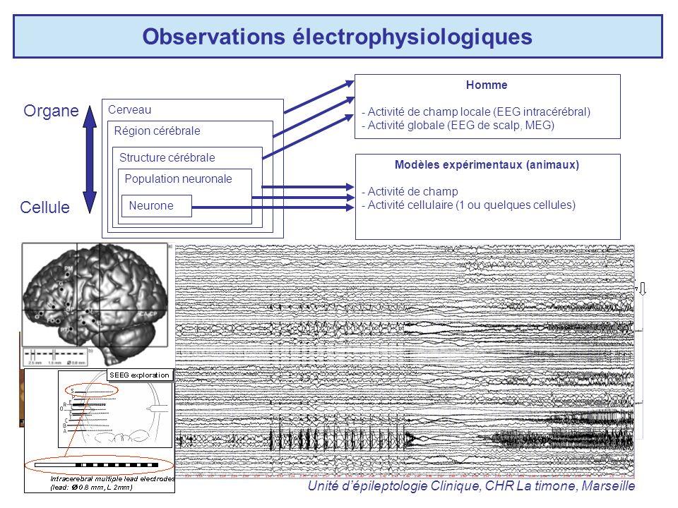 Observations électrophysiologiques