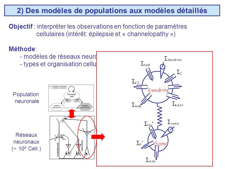 2) Des modèles de populations aux modèles détaillés