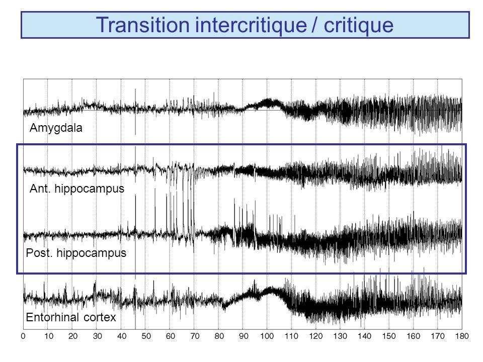 Transition intercritique / critique