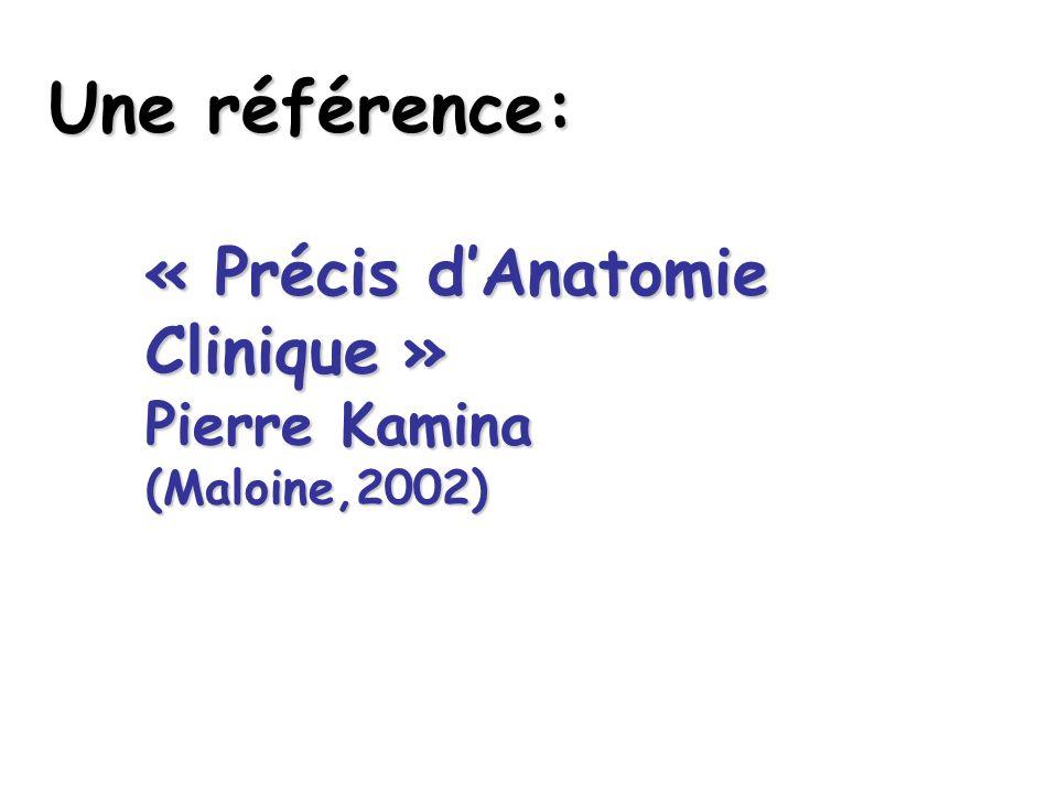 Une référence: « Précis d'Anatomie Clinique » Pierre Kamina (Maloine,2002)