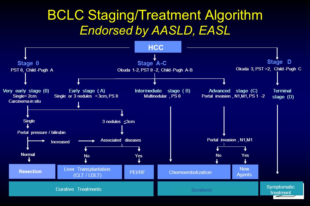 BCLC Staging/Treatment Algorithm Endorsed by AASLD, EASL