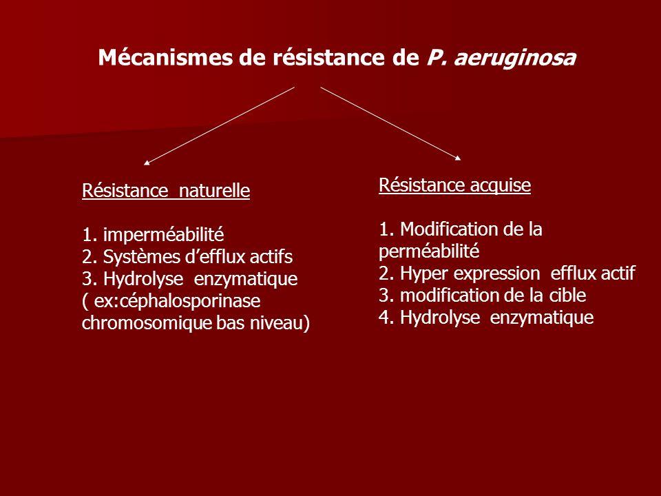 Mécanismes de résistance de P. aeruginosa