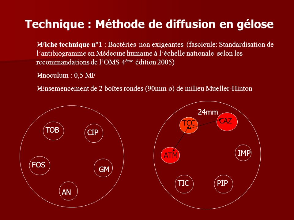 Technique : Méthode de diffusion en gélose
