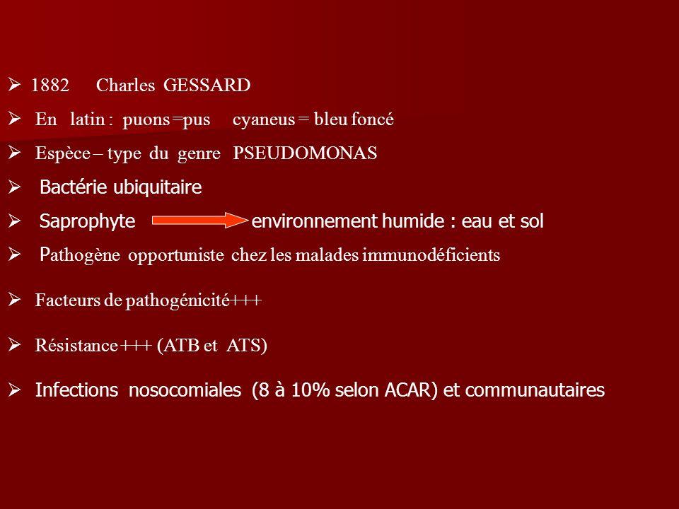 1882 Charles GESSARD En latin : puons =pus cyaneus = bleu foncé. Espèce – type du genre PSEUDOMONAS.