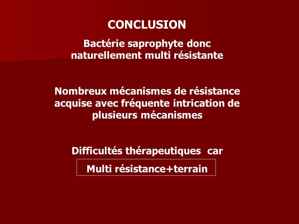 CONCLUSION Bactérie saprophyte donc naturellement multi résistante