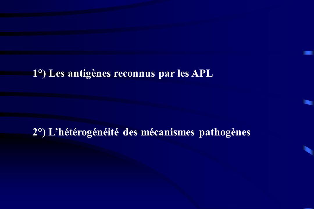1°) Les antigènes reconnus par les APL