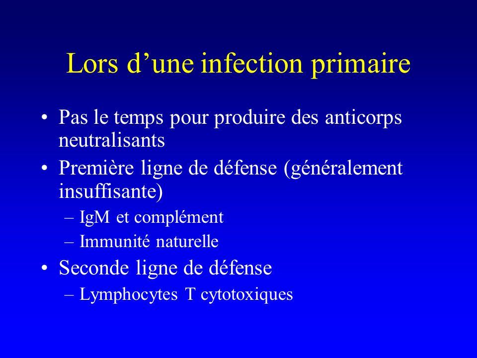 Lors d'une infection primaire