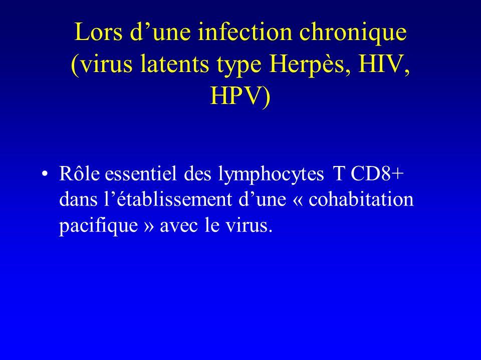 Lors d'une infection chronique (virus latents type Herpès, HIV, HPV)