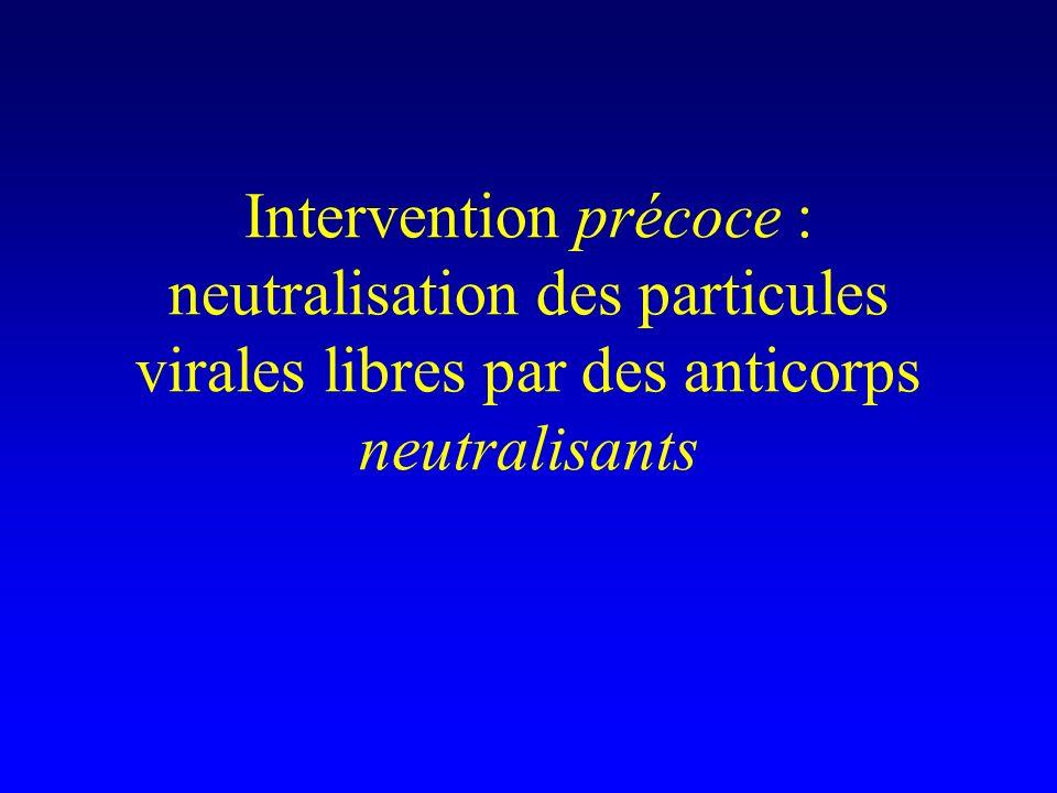 Intervention précoce : neutralisation des particules virales libres par des anticorps neutralisants