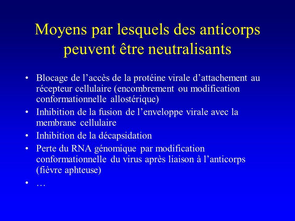 Moyens par lesquels des anticorps peuvent être neutralisants