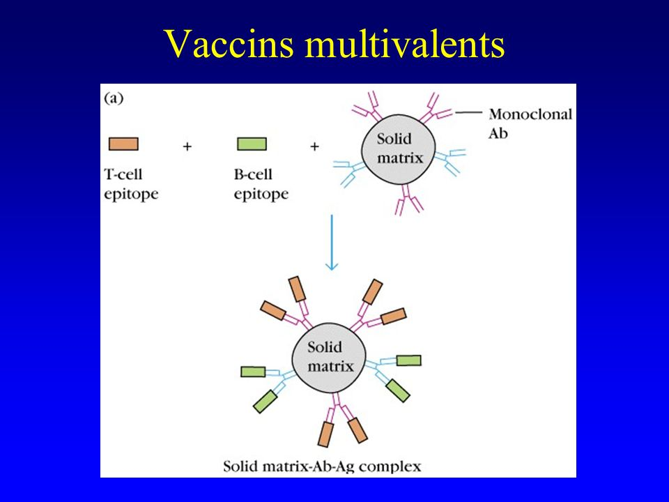 Vaccins multivalents