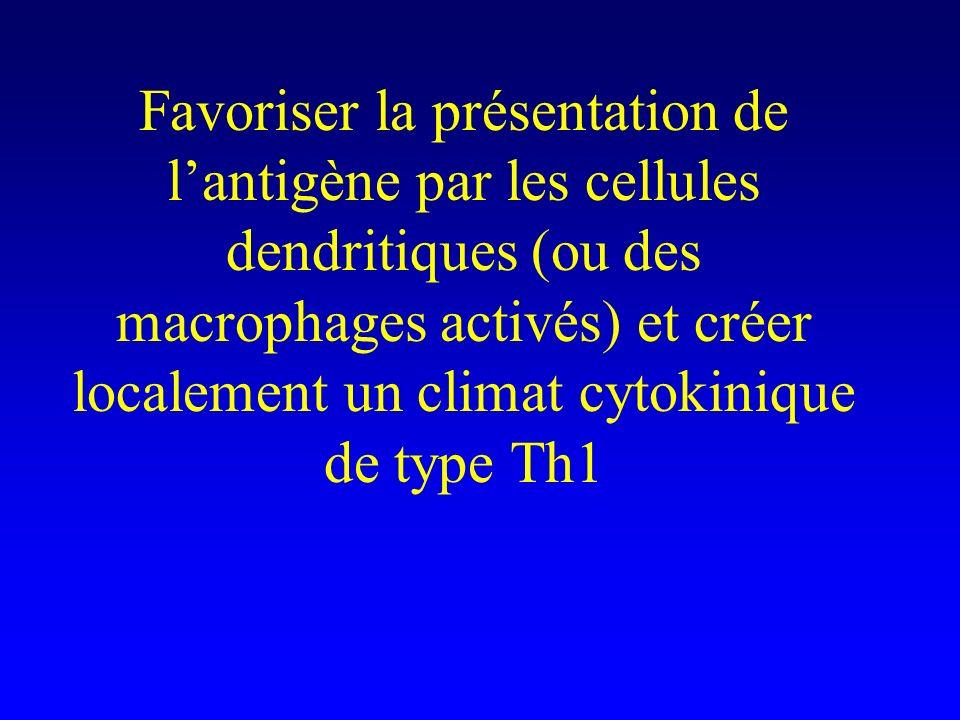 Favoriser la présentation de l'antigène par les cellules dendritiques (ou des macrophages activés) et créer localement un climat cytokinique de type Th1