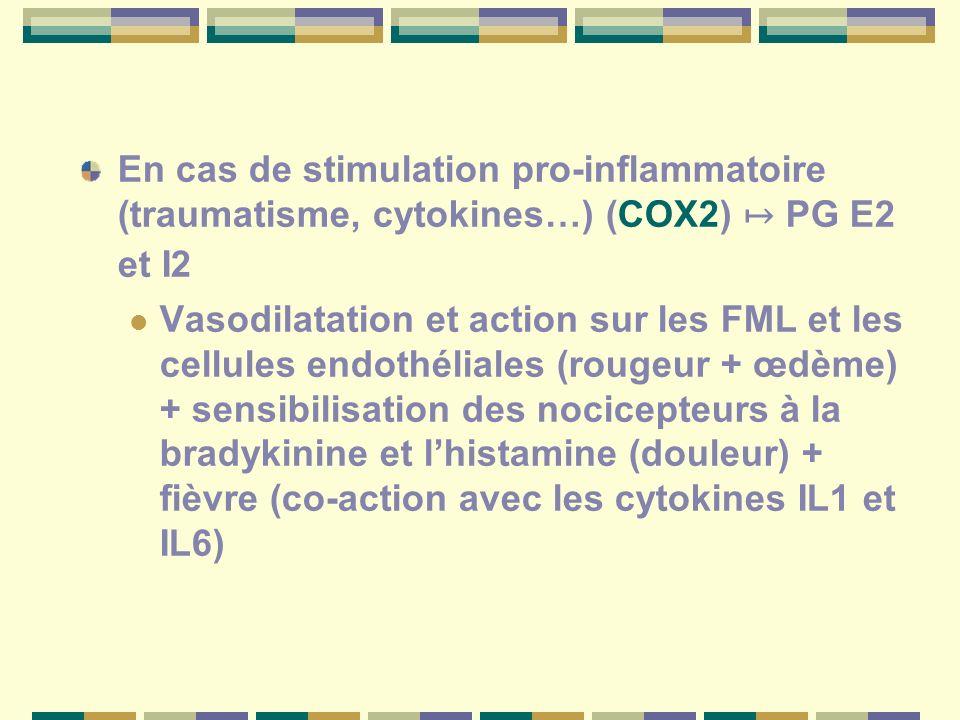 En cas de stimulation pro-inflammatoire (traumatisme, cytokines…) (COX2) ↦ PG E2 et I2