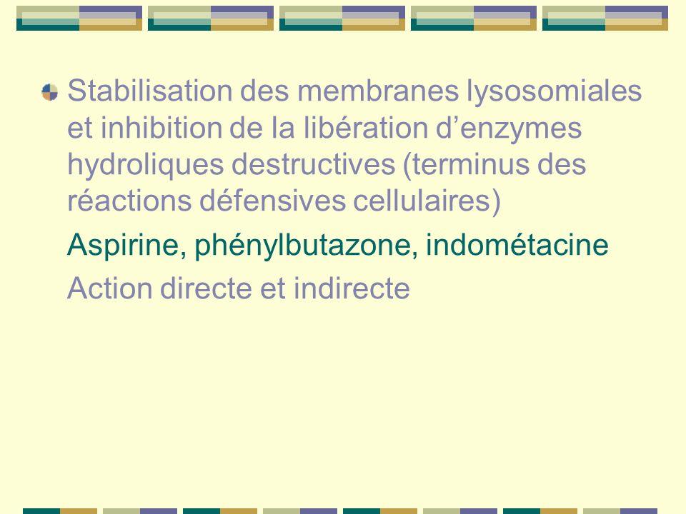 Stabilisation des membranes lysosomiales et inhibition de la libération d'enzymes hydroliques destructives (terminus des réactions défensives cellulaires)