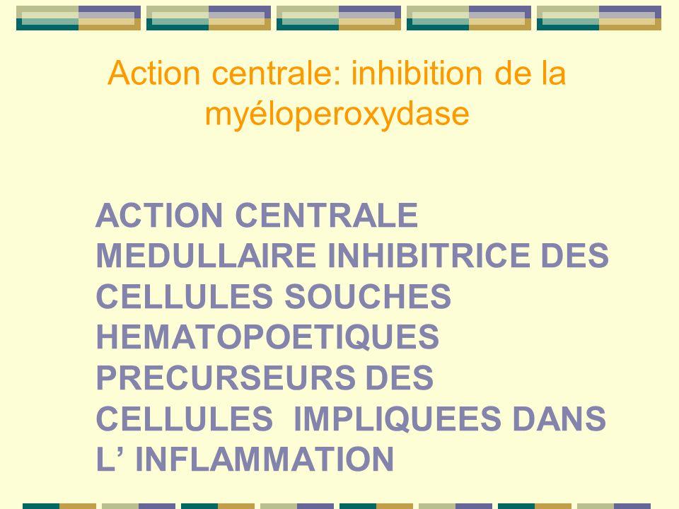 Action centrale: inhibition de la myéloperoxydase