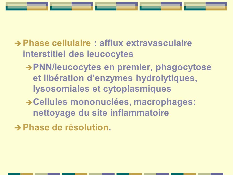 Phase cellulaire : afflux extravasculaire interstitiel des leucocytes