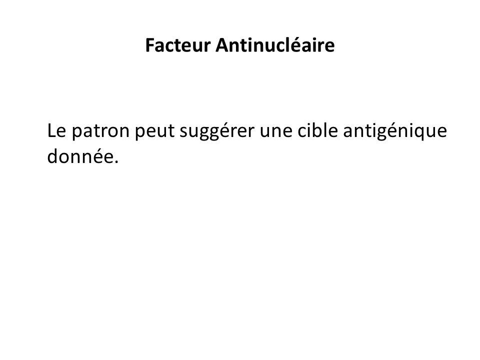 Facteur Antinucléaire