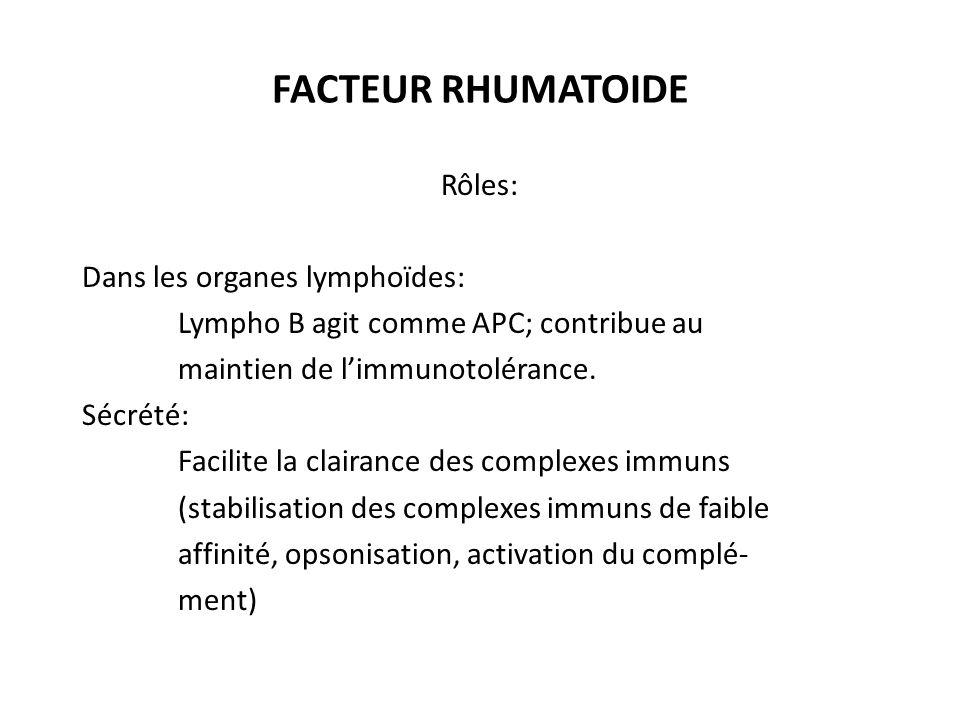 FACTEUR RHUMATOIDE Rôles: Dans les organes lymphoïdes:
