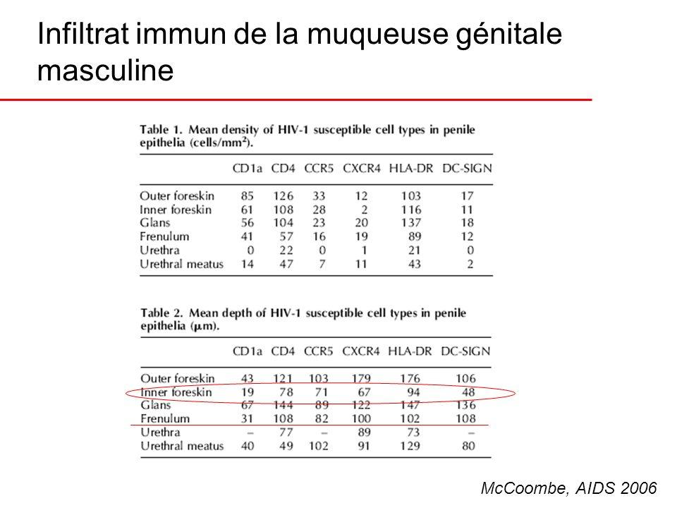 Infiltrat immun de la muqueuse génitale masculine