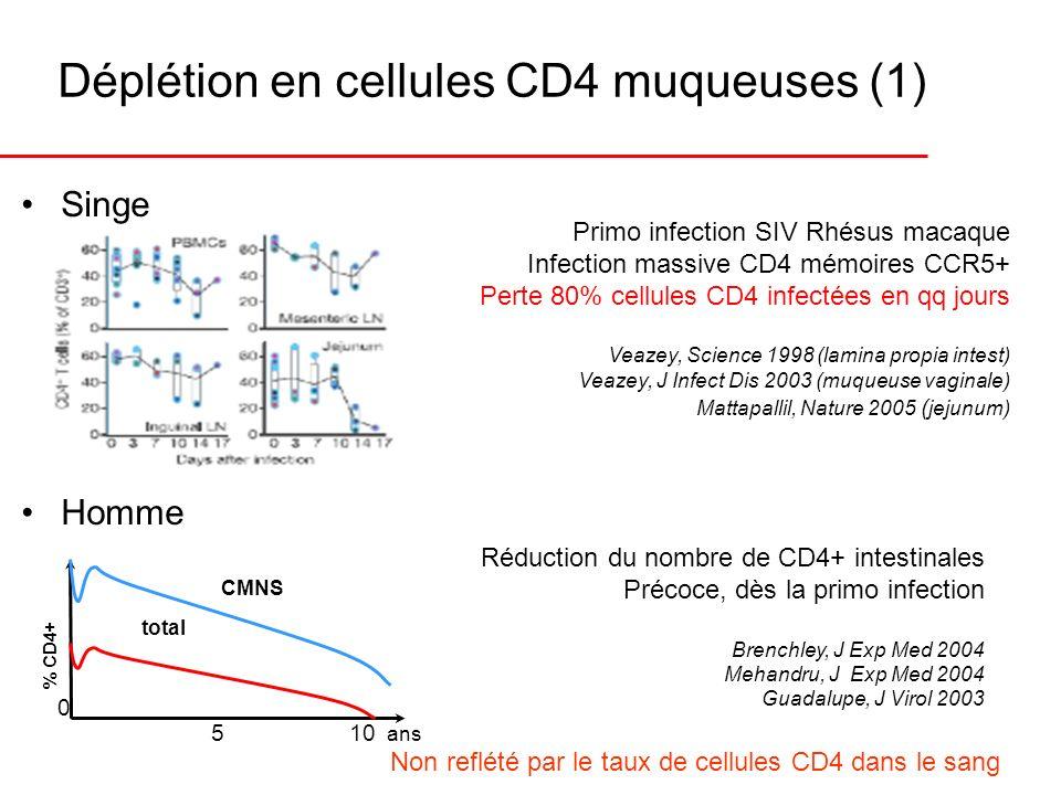 Déplétion en cellules CD4 muqueuses (1)