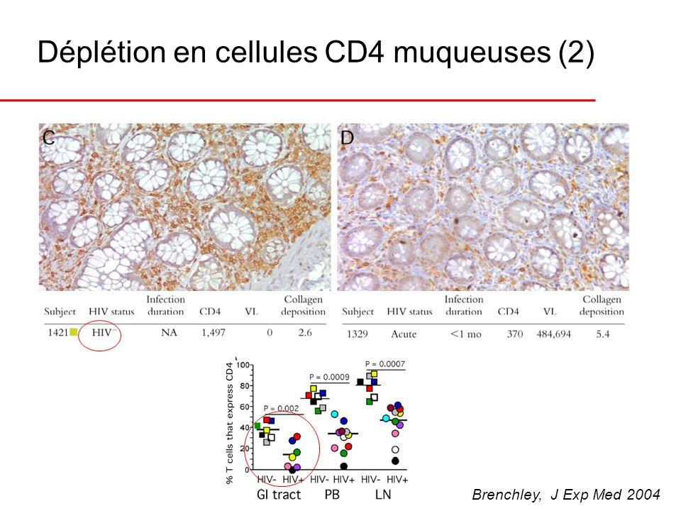 Déplétion en cellules CD4 muqueuses (2)