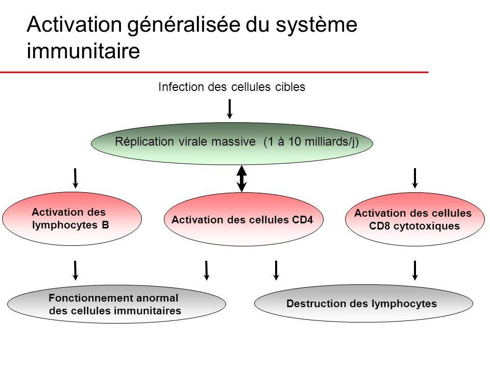 Activation généralisée du système immunitaire