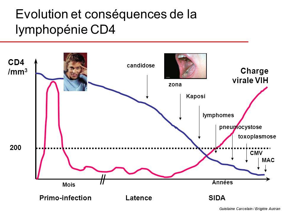 Evolution et conséquences de la lymphopénie CD4