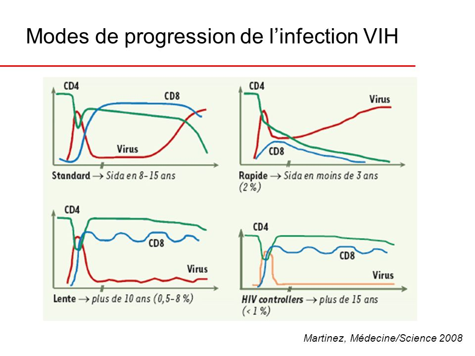 Modes de progression de l'infection VIH