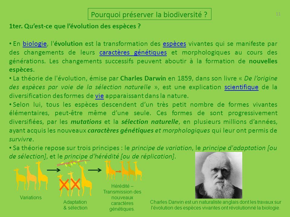 Hérédité – Transmission des nouveaux caractères génétiques.