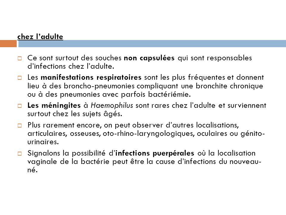 chez l'adulte Ce sont surtout des souches non capsulées qui sont responsables d'infections chez l'adulte.