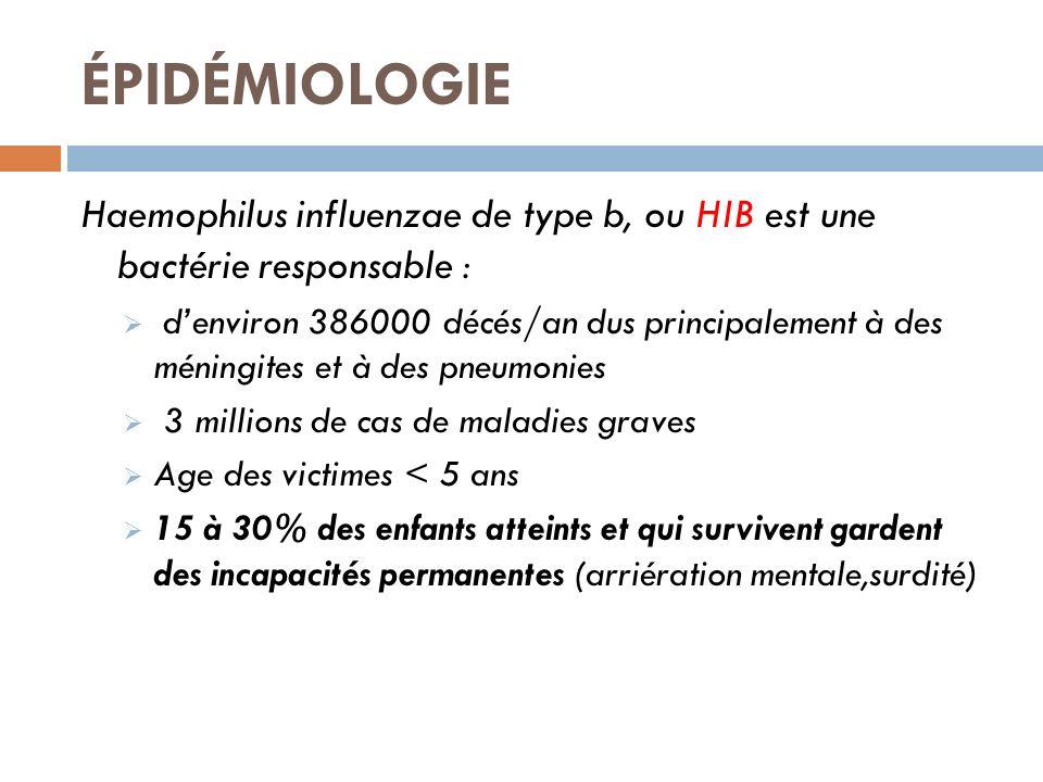 ÉPIDÉMIOLOGIE Haemophilus influenzae de type b, ou HIB est une bactérie responsable :