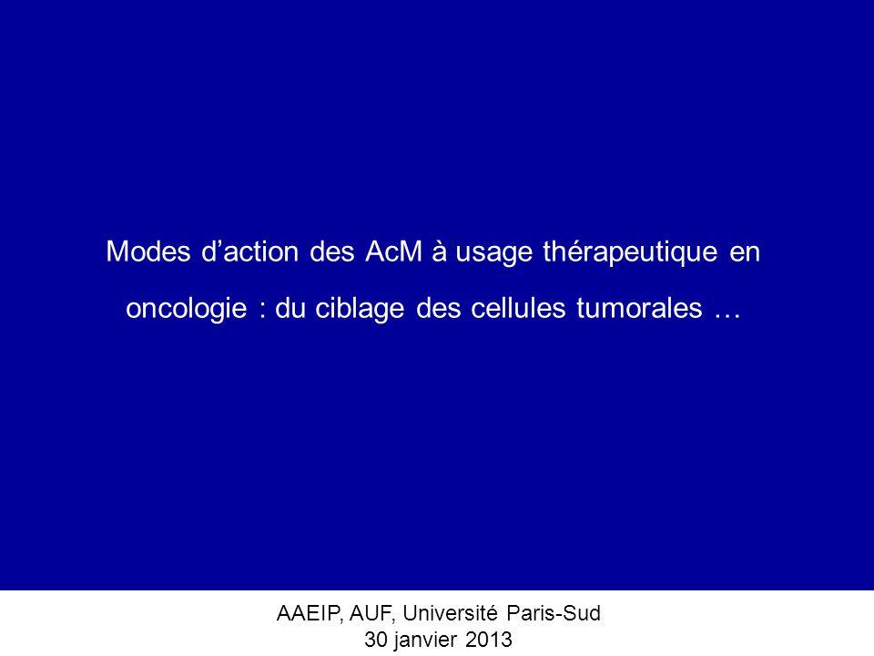 Modes d'action des AcM à usage thérapeutique en