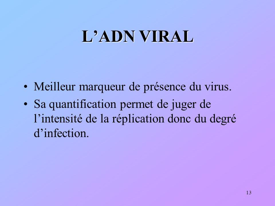 L'ADN VIRAL Meilleur marqueur de présence du virus.