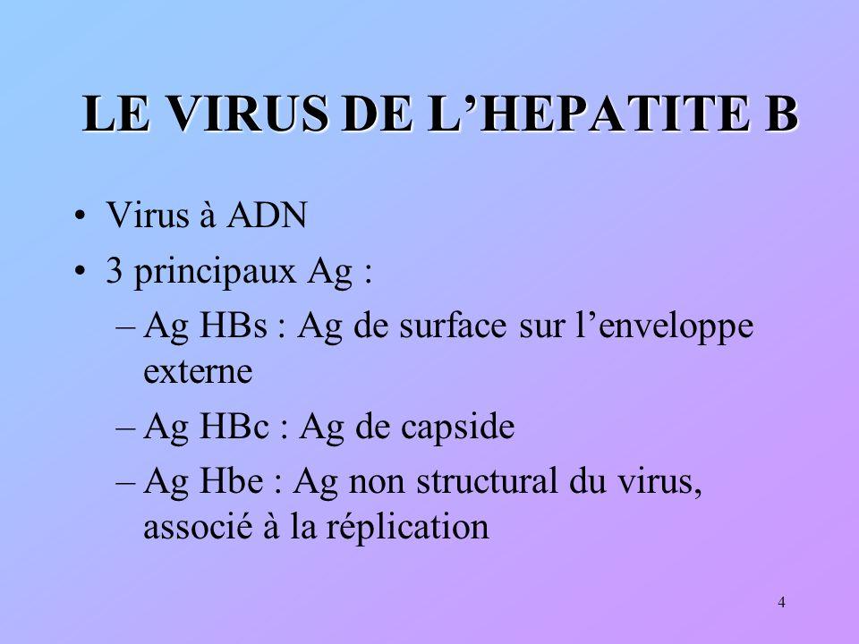 LE VIRUS DE L'HEPATITE B