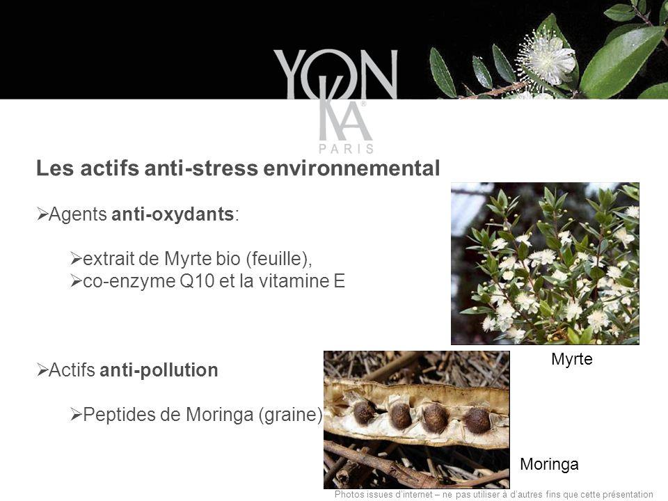 Les actifs anti-stress environnemental