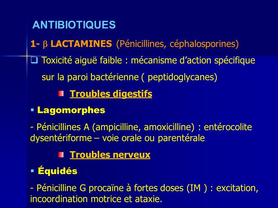 ANTIBIOTIQUES 1-  LACTAMINES (Pénicillines, céphalosporines)
