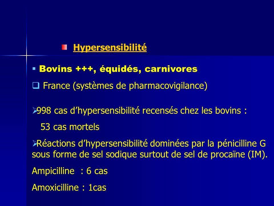 Hypersensibilité Bovins +++, équidés, carnivores. France (systèmes de pharmacovigilance) 998 cas d'hypersensibilité recensés chez les bovins :
