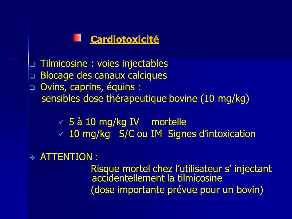 Cardiotoxicité Tilmicosine : voies injectables