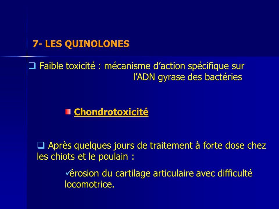 7- LES QUINOLONES Faible toxicité : mécanisme d'action spécifique sur l'ADN gyrase des bactéries.