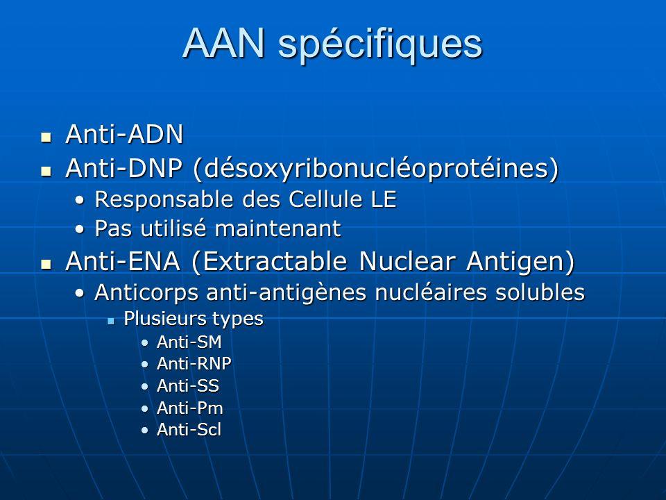 AAN spécifiques Anti-ADN Anti-DNP (désoxyribonucléoprotéines)